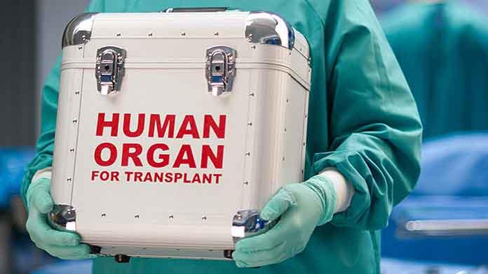 human-organ-trade
